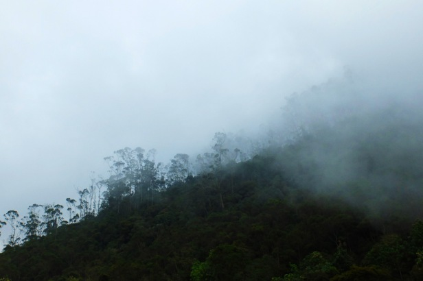 Chicaque Colombia - Latinamerikaliv