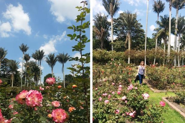 Jardin botánico Bogotá_Latinamerikaliv 12
