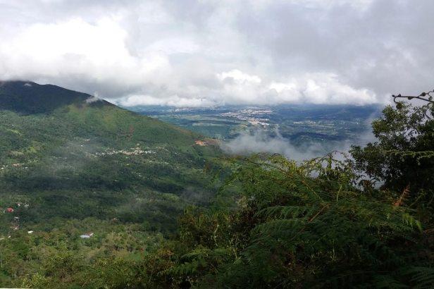 latinamerikaliv_quinini-colombia_1