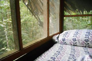 Latinamerikaliv_Amazonas_Tree house_8b