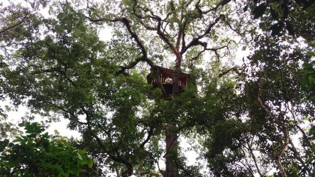 Latinamerikaliv_Chicacque casa de arbol_2